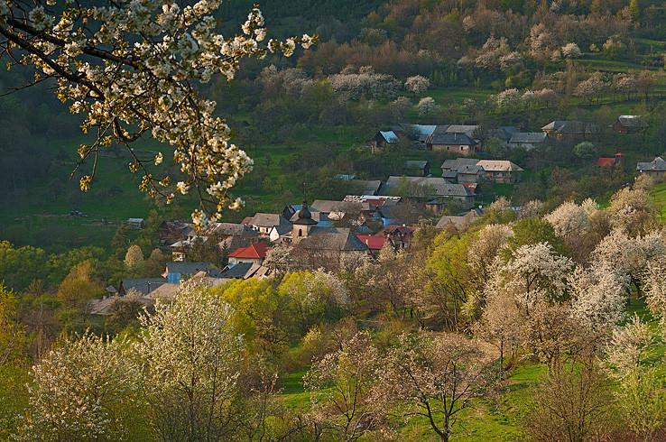 Brdárka - Čerešňovo