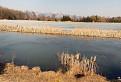 Ďanovský rybník