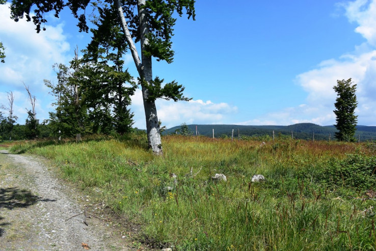 Krkavec (349 m)