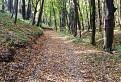 Jesennými chodníčkami Malých Karpát