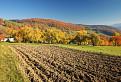 Podzim na kopanicích...