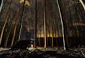 Jesenná nočná turistická prechádzka po  Klenovej