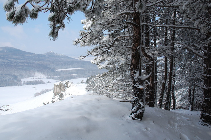 jarná zima, či zimná jar