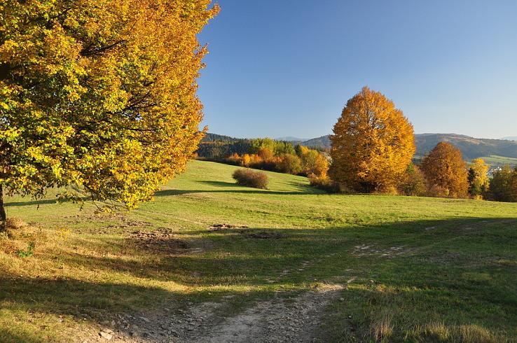 Jeseň nad Dunajovom