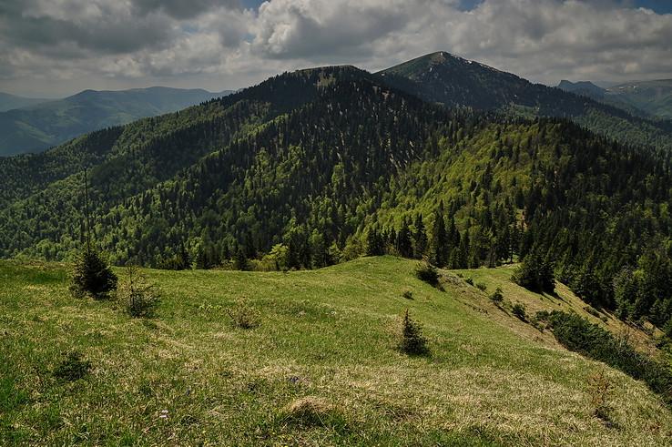 Spod Skalnej Alpy