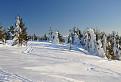 Trochu snehovej nádhery