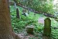 Židovský cintorín v lese