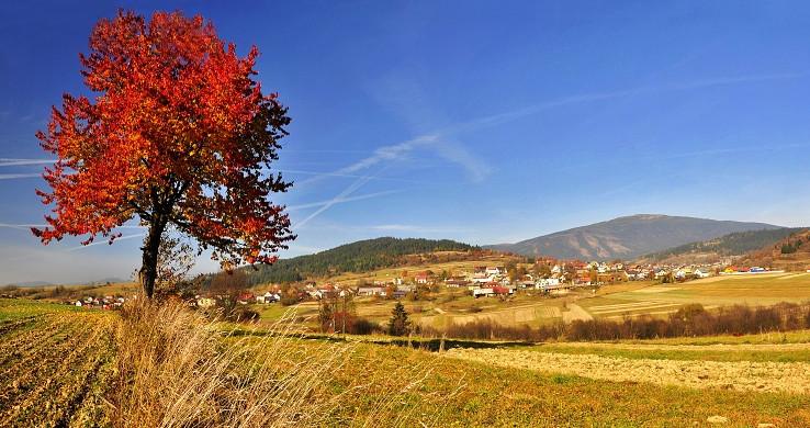 Jeseň pod Babou horou