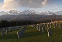 Nemecký vojenský cintorín Važec