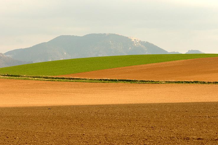 poľnohospodárske okienko