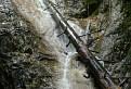 Vodopádik a strom