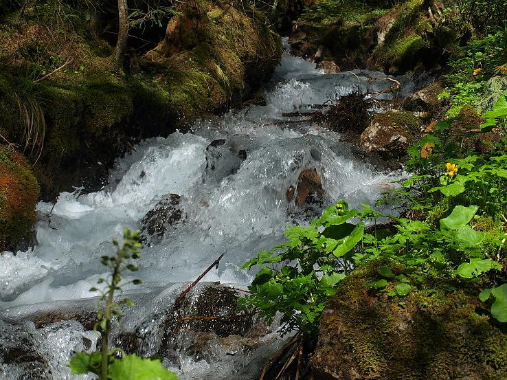 Živá voda.