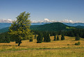 Ponická Bukovina