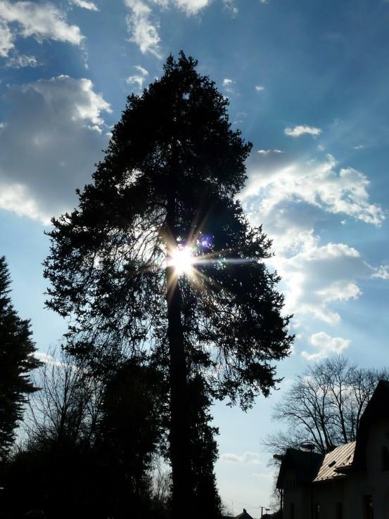 Herľanské slnko