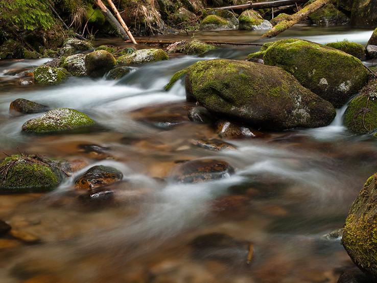 Na Studenom potoku