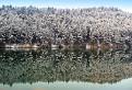 Zimné zrkadlenie