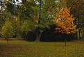 jesen v parku / 1.5000