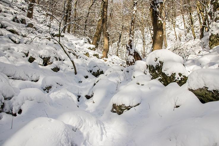 Zima v žlabe
