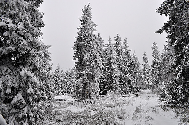 Stolická zima II.