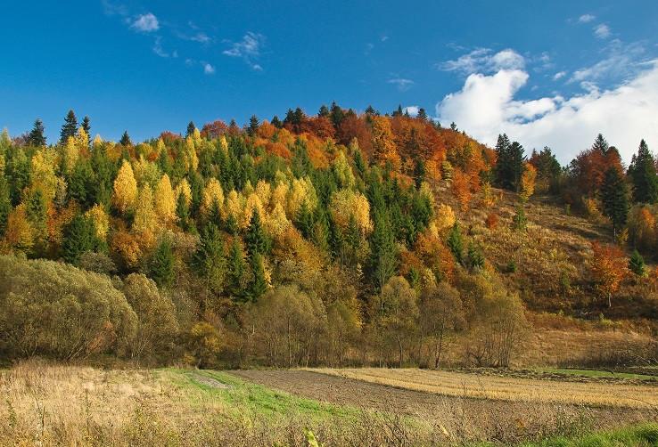 Najkrajšia jesenná hora