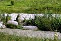 Priezračnosť Vrábľovského potoka