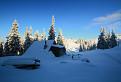 Mandolína v zime / bez hodnotenia