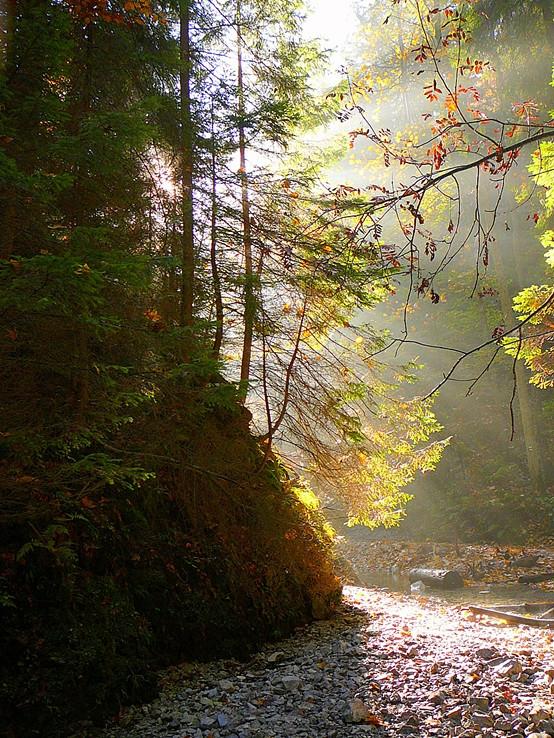 Jesenné ráno,