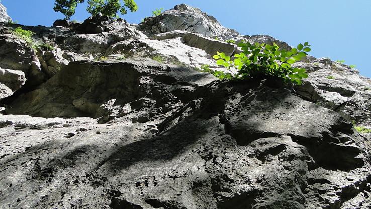 Pod skalou