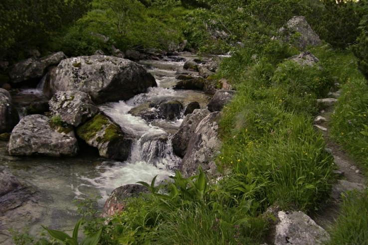 Potok Javorinka