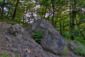 Trúbiaci kameň...(Turecká píšťala)
