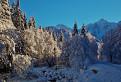Všedný zimný deň
