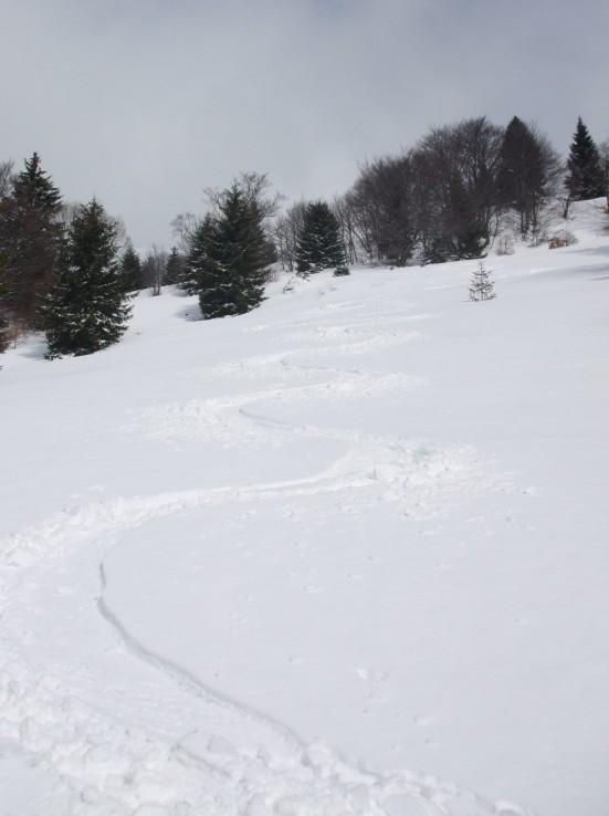 Nový sneh na Donovaloch