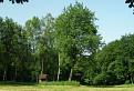 Lesná čistina / 1.0526