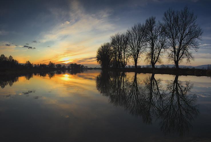 Prejtský rybník I.