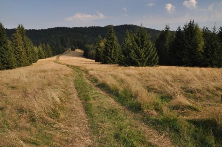 Na hrebeni II