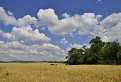 Oblaky na Záhorí