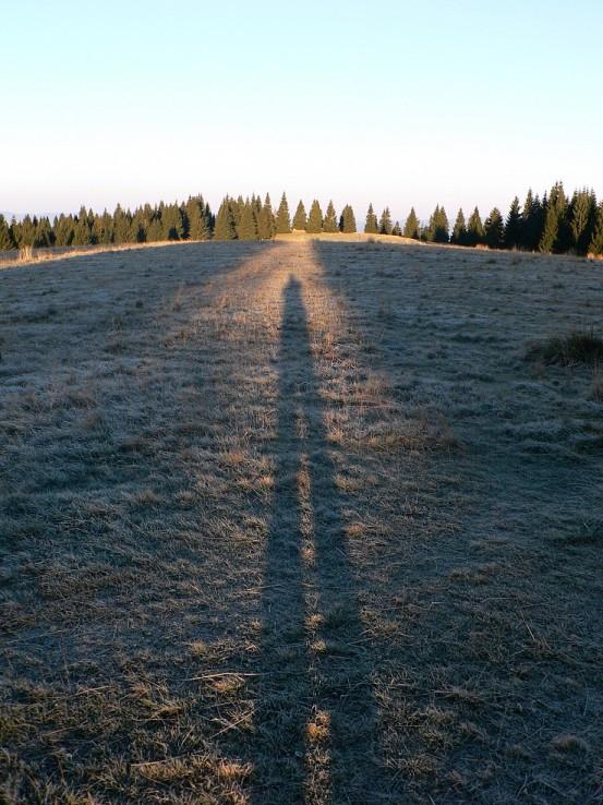 Bukovinské dlhé tiene