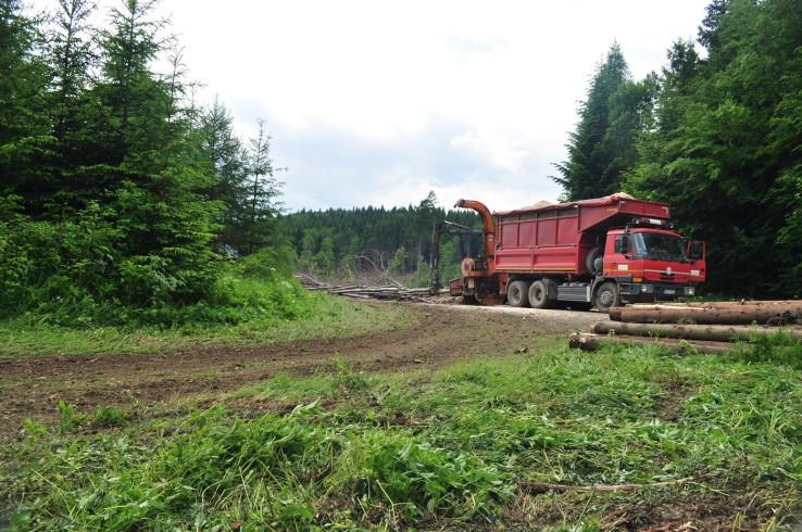 Všetko pre záchranu lesa