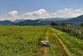 Cestou do Malých Karpát
