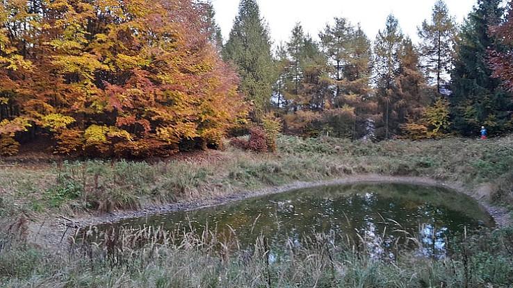 Jazierko pod hrebeňom