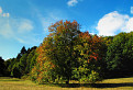 Color strom