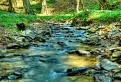 Mníchovský potok