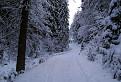 Zimná Medvedia cesta II.