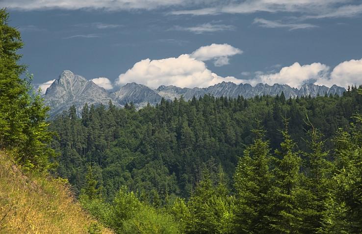 Za lesom sú Tatry
