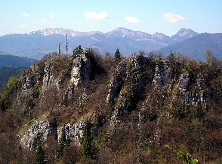 Tupá z Ostrej II.