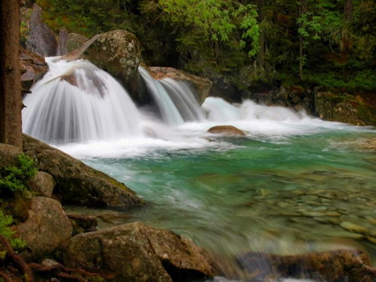 Tatranská divočina