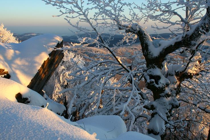 Krása malokarpatských zim :-)