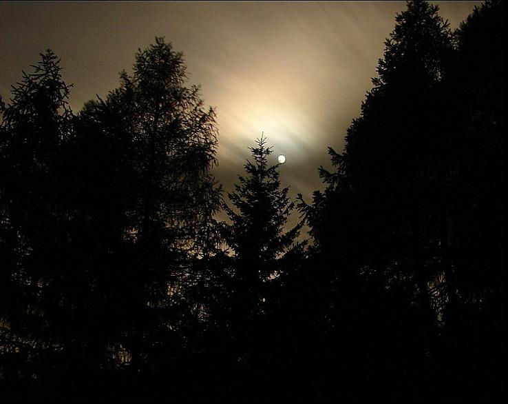 Noc vo Chvojnici