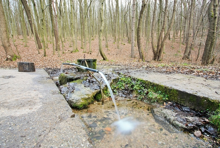 Prameň v doline Vracovského potoka