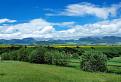 Chočské vrchy od Galovian.